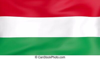 Flag Of Hungary - Developing the flag of Hungary