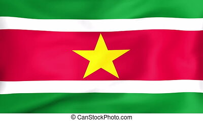 Flag Of Suriname - Developing the flag of Suriname
