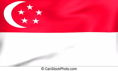 Flag Of Singapore - Developing the flag of Singapore