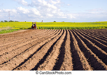 spring field with tillage and tractor - spring field with...
