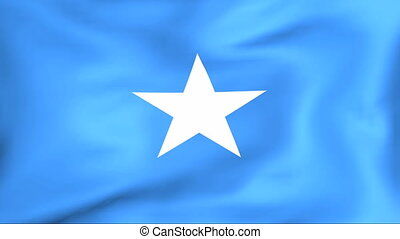 Flag Of Somalia - Developing the flag of Somalia