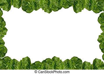 Romaine lettuce frame - Romaine lettuce border isolated over...