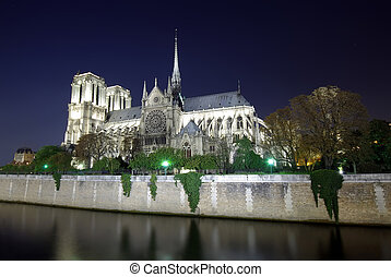 Notre Dame cathedral in Paris, night scene