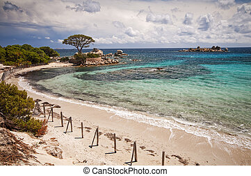 Palombaggia, Corsica beach