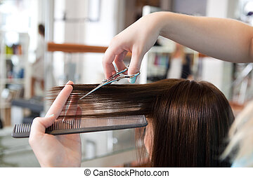 Hairdresser Cutting Client's Hair - Hairdresser cutting...