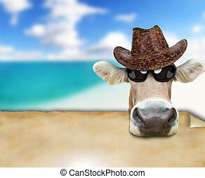 Funny cow portrait, concept of summer holidays