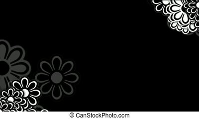 wild daisy flower,spring scence,wedding background.