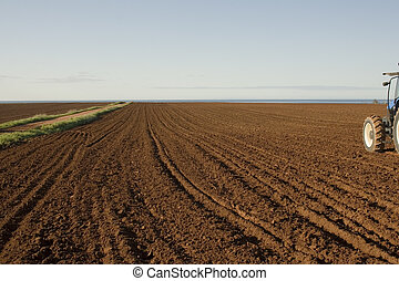 Red Soil - The cultivated red soil of prince edward island