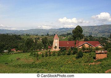 Rice Fields in Uganda, Africa