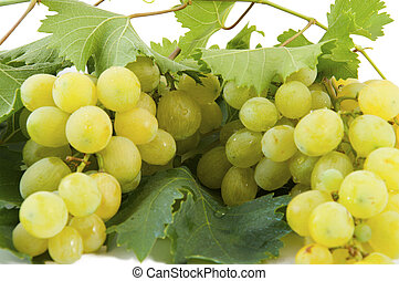 white table grapes - grapes white with black background