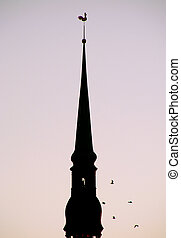 Church spire - Silhouette of Saint Peter church and birds...