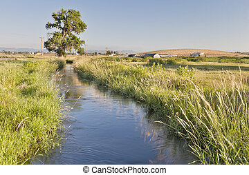 irrigation ditch in Colorado farmland near Fort Collins with...