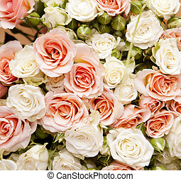 Floral background for your design, roses