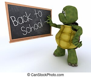 tortoise with school chalk board back to school - 3D render...