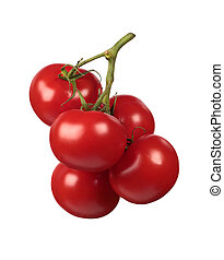 Fresh red tomatoes branch isolated on white background