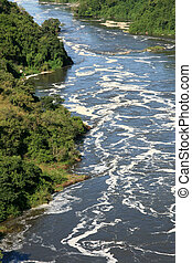 The Nile River, Uganda, Africa - The River Nile, Murchison...