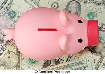Piggy bank on paper money