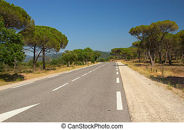 The road through the Mediterranean landscape - The asphalt...