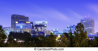 Finlay Park - View of downtown Columbia, South Carolina from...