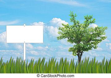 blank sign background of grass pattern on nice blue sky