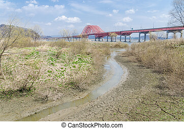 swamp wetland bridge - swamp park next to the Han river