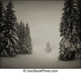 Vintage winter landscape in the forest