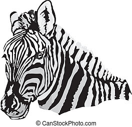 zebra made in eps