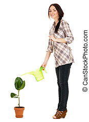 Beautiful young woman watering a plant, white background