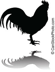 Cock silhouette vector illustration