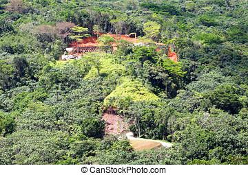 forest destruction,deforestation ciales puerto rico