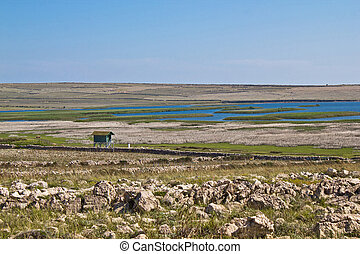 Ornithological reserve on Pag island with watching tower,...