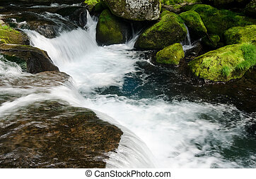 Mountain torrent - Fast current of mountain torrent with...