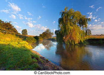Beautiful summer landscape near the river