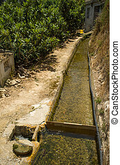 Traditional irrigation