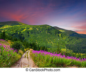 Beautiful summer landscape in the mountains with pink flowers. Sunset