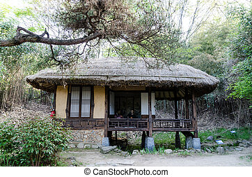 thatched roof house cottage