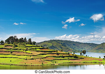 Bunyonyi lake in Uganda - African landscape with lake and...