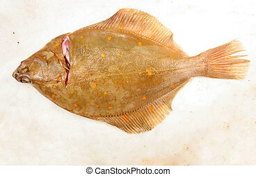 Plaice flat fish on marble slab
