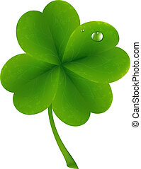 Lucky Clover, Isolated On White Background, Vector...