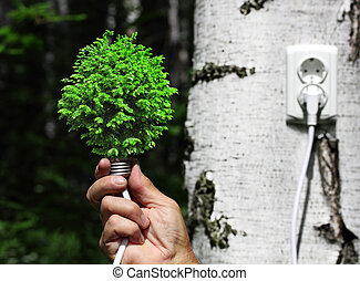 tree growing from the base of the light bulb - ecological...