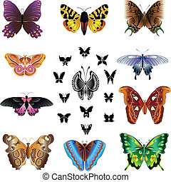 Butterfly dream - Insects. Butterfly icon set. A colorful...