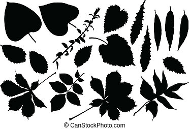 Leaf set - The black silhouette of leafs Vector illustration...