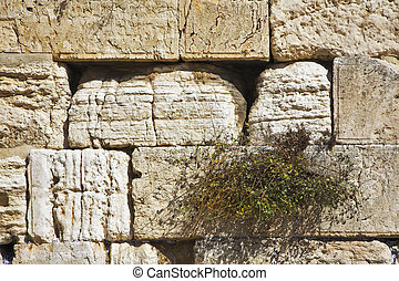 The western wall of the Jerusalem temple shined by the sun