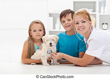 Kids taking their pet to the veterinary - Kids taking their...