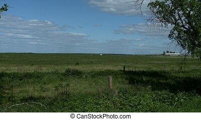 Green meadow next to farm