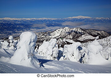 Soft rime and Mt. Gassan in Japan - Soft rime and Mt....