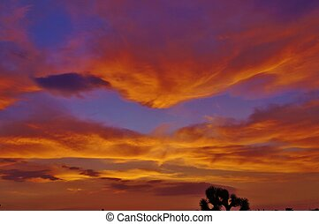 Orange clouds purple desert sunset - Southwestern desert...