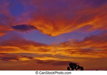 橙, 云霧, 紫色, 沙漠, 傍晚