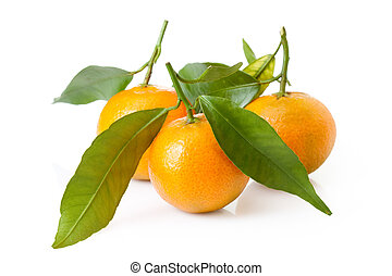 fresh mandarin fruits and green leaves