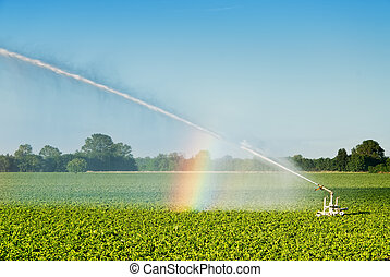 field irrigation - mechanized irrigation of a cultivated...